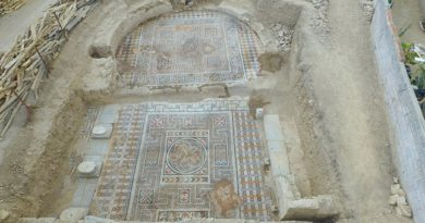 Splendides mosaïques dégagées dans les ruines d'un gymnase romain en Turquie